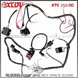 Complete Electrics Atv Quad Four Wheeler 200cc 250cc