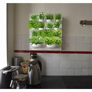 Support Plante Intérieur : potager mural pour herbes aromatiques ~ Teatrodelosmanantiales.com Idées de Décoration