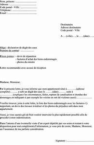 Lettre Declaration Sinistre : mod le de lettre d claration de sinistre l assurance d g t des eaux dans appartement ~ Gottalentnigeria.com Avis de Voitures