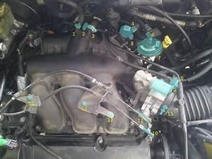 2002 Ford Escape V6 Vacuum Hose Diagram