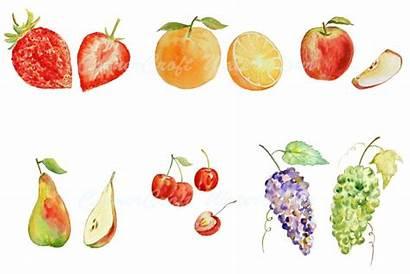 Fruit Watercolor Clipart Watercolour Fruits Apple Orange