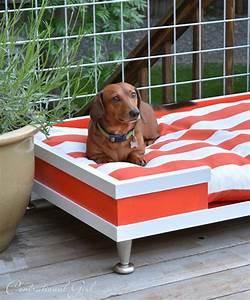 diy modern pet bed centsational girl With girl dog beds