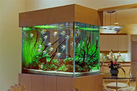 40 new style aquarium design ideas for your home