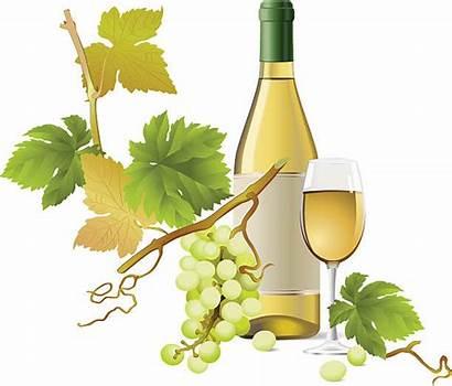 Wine Vector Clip Illustrations Similar Royalty