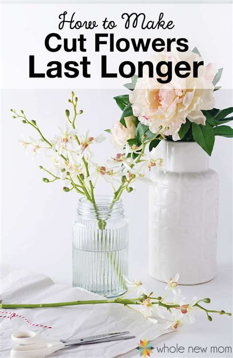 Make Cut Flowers Last Longer by How To Make Flowers Last Longer Plus The Best Method Of All