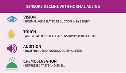 Sensory Ageing Matters Multisensory Successful Why Futurelearn