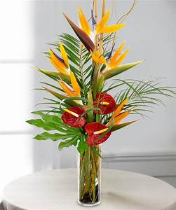 Tropical Paradise Bouquet at Beneva Flowers