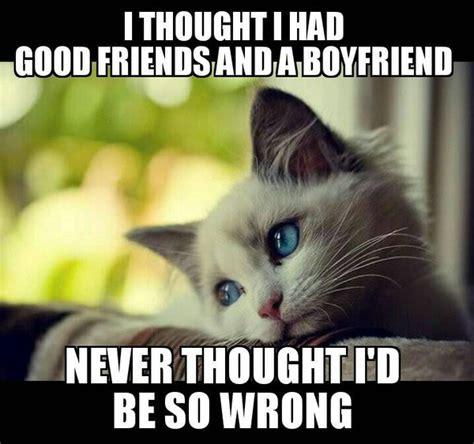 Sad Cat Meme - sad kitty meme 28 images sad kitten memes image memes at relatably com sad cat face memes