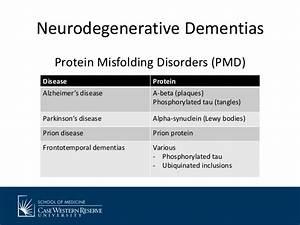 Update on Clinical Research in Dementia