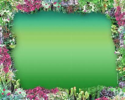 Frames Border Frame Background Borders Flower Backgrounds