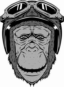 Monkey In The Motorcycle Helmet And Glasses  Vintage Black