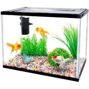pompe pour aquarium 20l 28 images aquarium complet 2200l e douce aqua distribution aquarium