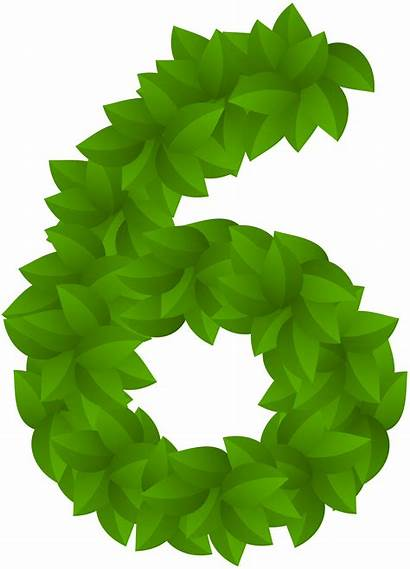 Number Leaf Six Clip Clipart Numbers Decorative