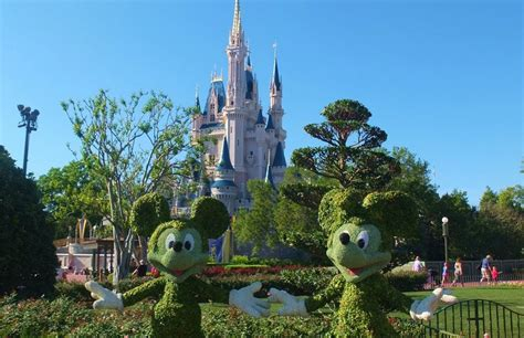 walt disney world resort usa palmwood vacations international