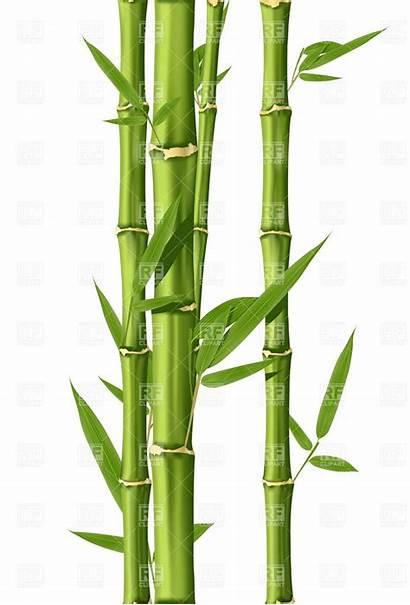 Bamboo Drawing Clip Luck Symbols