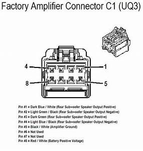 2008 Trailblazer Stereo Wiring Diagram : carfusebox chevrolet 2008 hhr amplifer connector c1 wiring ~ A.2002-acura-tl-radio.info Haus und Dekorationen