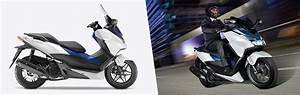 Scooter Forza 125 : offers forza 125 scooter range motorcycles honda ~ Medecine-chirurgie-esthetiques.com Avis de Voitures