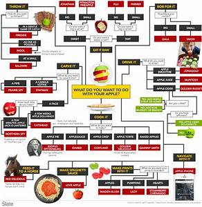 Apple Variety Flow Chart  Which Kind Of Apple Should I