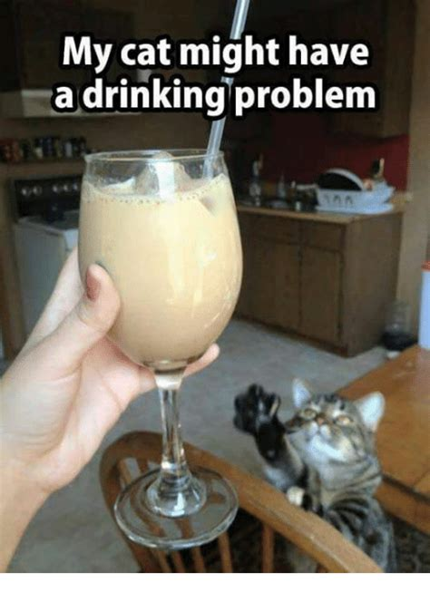 Drinking Problem Meme - funny have a drink memes of 2017 on sizzle