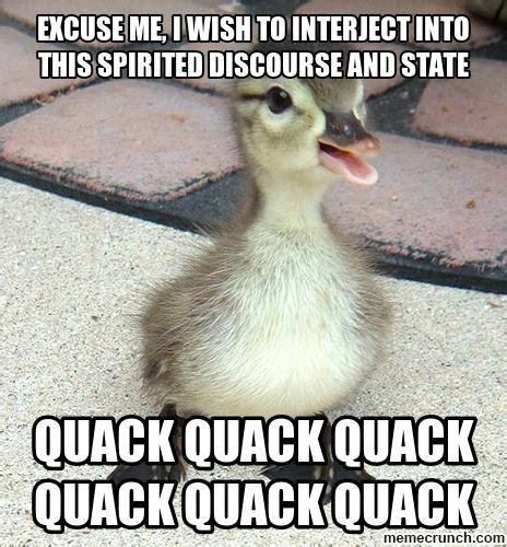 Meme Duck - baby ducks memes