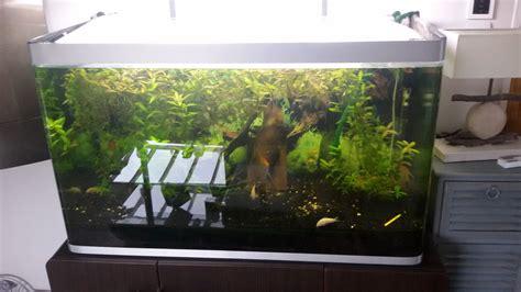 aquarium prix