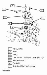 1991 Cadillac Brougham Serpentine Belt Routing And Timing