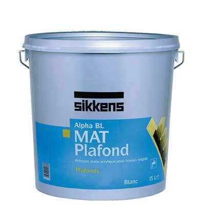 peinture professionnelle pour plafond peinture professionnelle pour plafond de conception de maison