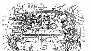 1998 Expedition Engine Diagram : 1998 ford f 150 engine schematic ~ A.2002-acura-tl-radio.info Haus und Dekorationen