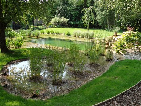 Swimming Pond : Natural Swimming Pools Warwickshire, Swimming Pond Design