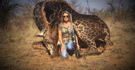 outrage  american hunter poses  dead giraffe