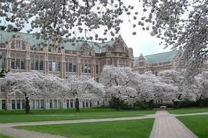 Best Law School Campus - Page 7 - Top Law Schools