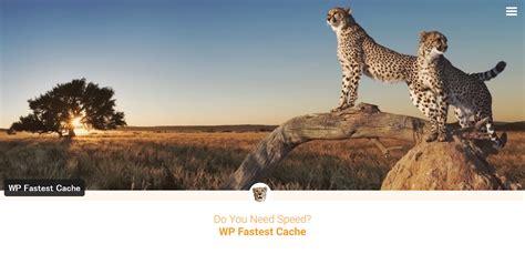 Wp Fastest Cacheでサイトの速度計測pagespeed Insightsの結果は改善する?