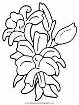 Kwiaty Kolorowanki Druku Dla Dzieci Gladiolo Gladioli Gladiolos Coloring Dibujo Disegno Flowers Malowanki Flores Fiori Imprimir Forsythia Colorare Sketch sketch template