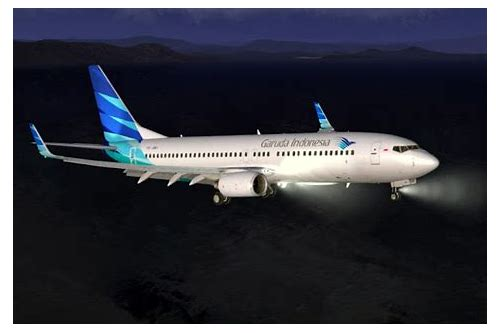 Download livery garuda indonesia pmdg :: libingsapphind