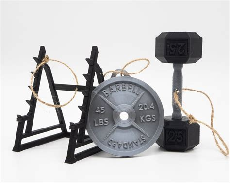 fitness ornament variety set  pack   squat rack weight plates packing