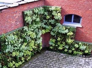 Mur Vegetal Exterieur : creer un mur vegetal exterieur digpres ~ Melissatoandfro.com Idées de Décoration
