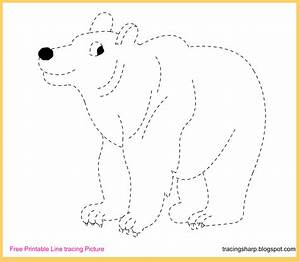 Free Tracing Line Printable: Bear Tracing Picture  Tracing