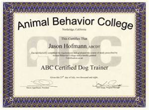 203 pet service employee profiles dog walker pet sitter With dog training certification