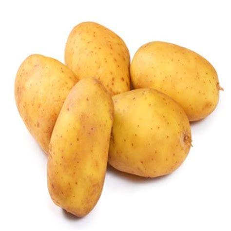 la pomme de terre pr 233 sentation production consommation
