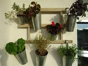 Hängende Pflanzen Aussen : der eigene kr utergarten auf balkon ~ Sanjose-hotels-ca.com Haus und Dekorationen