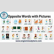 Opposite Words With Pictures  English Study Here