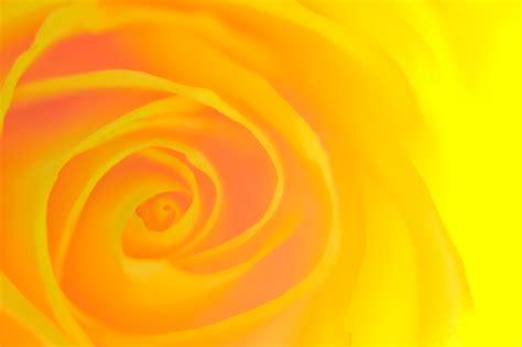 Yellow Picture by Gli Effetti Dei Colori Arte