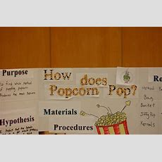 10 Awesome Second Grade Science Fair Project Ideas 2019