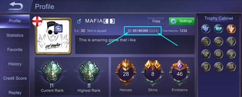 Where Can I Find My Mobile Legends User Id?