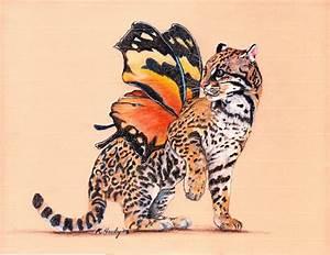 1000+ images about ART - UNIQUE BUTTERFLIES on Pinterest ...