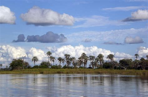 Botanischer Garten Windhoek by Das Beste Namibia Und Botswana
