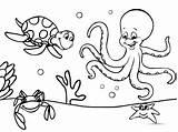 Coloring Ocean Sea Animals Printable Forkids Octopus sketch template