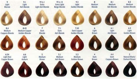related  honey blonde hair color chart sophie