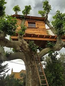 Constructeur Cabane Dans Les Arbres : ecobane constructeur cabanes bois et h bergements insolites ~ Dallasstarsshop.com Idées de Décoration