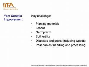 Progress And Achievements In The Genetic Enhancement And